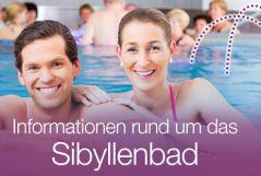 gemeinde_neualbenreuth_links_startseite_klein_sibyllenbad_violett