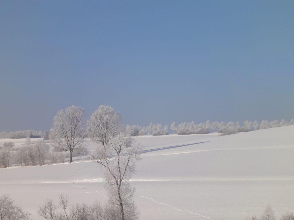 Langlauf Winter
