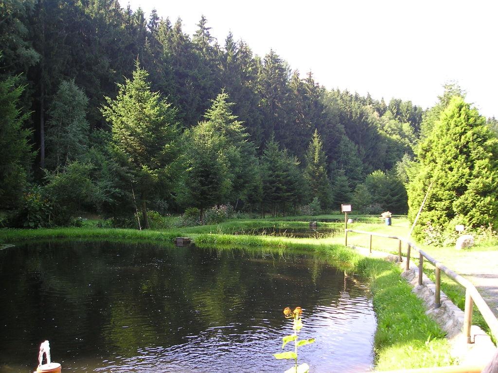 Beckerteich Neualbenreuth