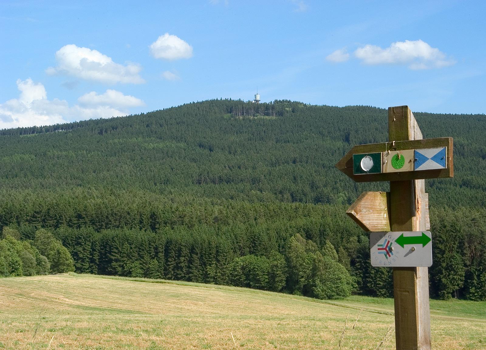 Neualbenreuth-Wandern-Tillenberg