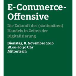 flyer_e-commerce_nov-08-11-16-endg-thumbnail