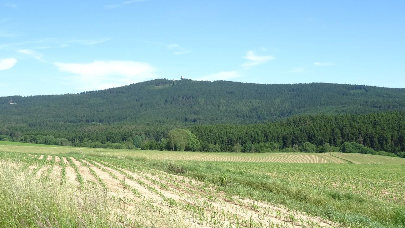 Geopark Neualbenreuther Maar1