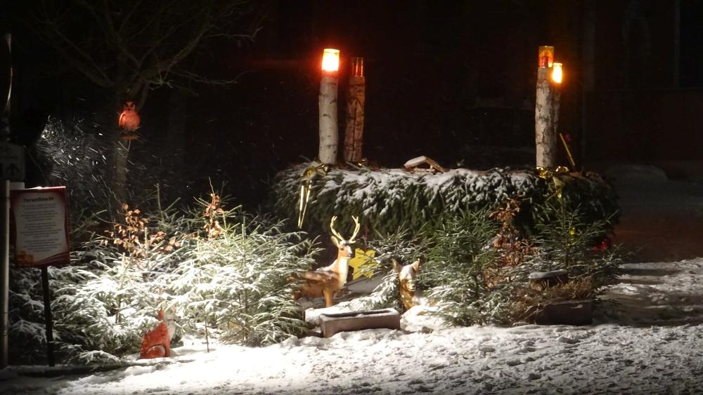 Weihnachtlicher Kunsthandwerkermarkt Neualbenreuth (12)