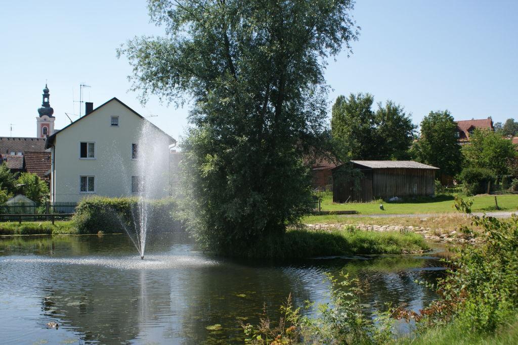Dorfteich
