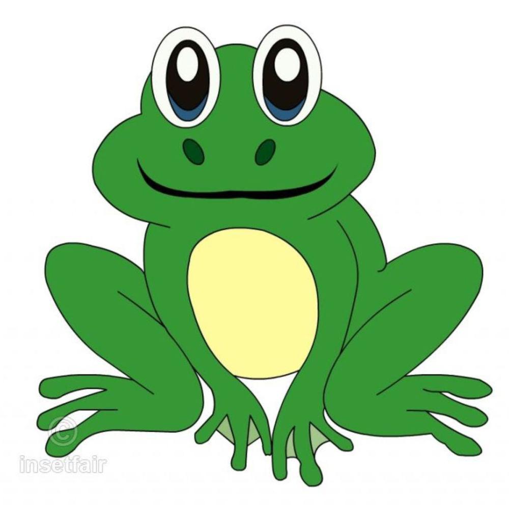 Teichfest Frosch