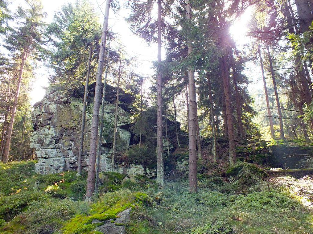 Über die Grenze zum Tillenberg